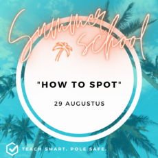 workshop how to spot